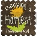 reaping a harvest, homeschool blog